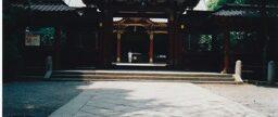 4. Pachinko Palace (3)
